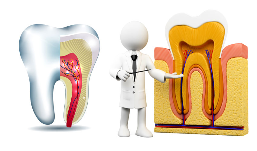 about root canal treatment